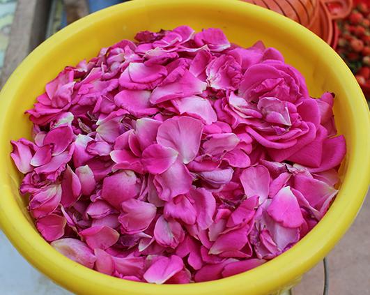 trandafiri petale