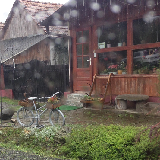 in ploaie