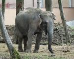 zoo_0034